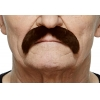 Moustache Dark Brown